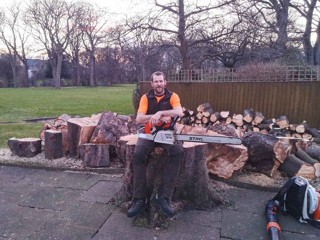 large pile of logs following a tree removal by a qualified tree surgeon in whitburn
