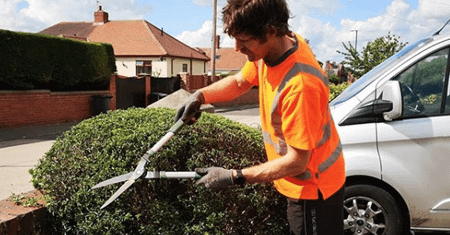 manual hedge trimming carried out by a tree surgeon